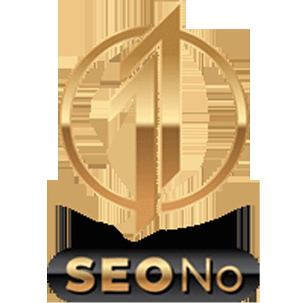 SEONo1