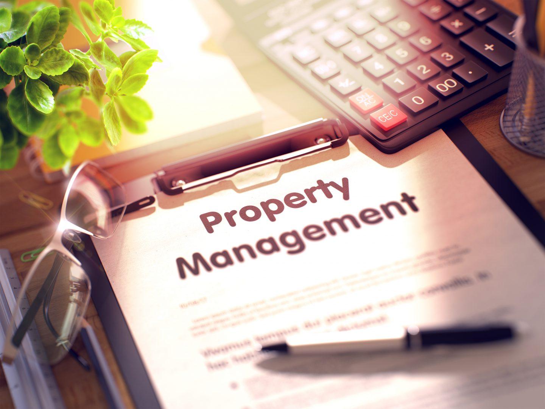 Gen Z Property
